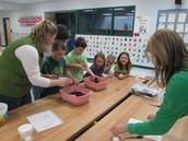 Planting brassica seeds