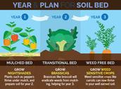 Crop Rotation: Soil Conservation