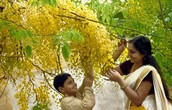 VISHU HOLIDAY TOUR AND TRAVEL PACKAGES