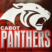 FRIDAY IS PANTHER PRIDE SPIRIT DAY!!!!!!