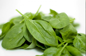 Spinach is high in Folic Acid!