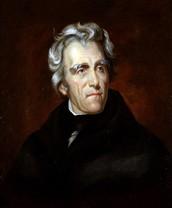 Andrew Jackson is a hero