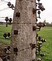 Electric Fencepost