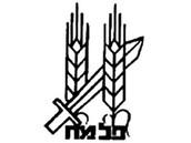 """סמל הפלמ""""ח"""