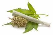 Marijuana Can Be Smoked