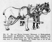 Horse Harnesses