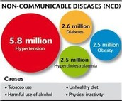 What is a Non-Communicable Diseases?