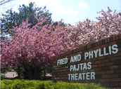 Pajtas Theater - Summer Concerts