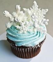 Winter Wonderland Cupcake