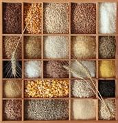 Los cereales son muy sabrosas y para la salud.