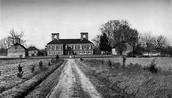 Where  Robert E. Lee grew up