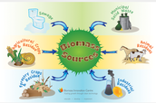 How is biomass found and how is it used!