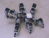 Spidermatic