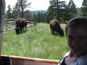 Me with a buffalo