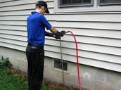 Pest Detection  Specialist