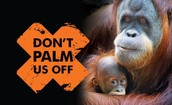Don't Palm Us Off