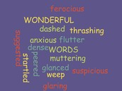 Some of our WONDERFUL vocabulary words!