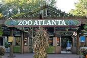 Field Trip to the Atlanta Zoo: 11/3/2016