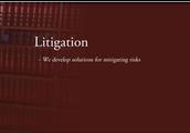 St Kitts litigation Services