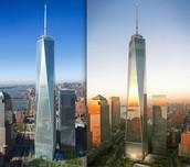 The New WTC