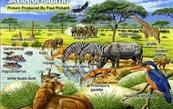This picture shows the animals that call the African grasslands their home.