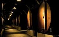 dos melhores vinhos do Mundo.
