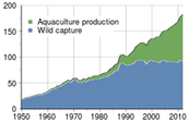Global Harvest Of Aquatic Organisms