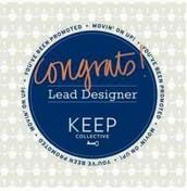 Lead Designers