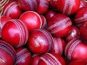 Cricket, Les chose que tu as besoin