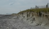 How Much Do Costal Communities Save In The Protection They Get From Dunes?