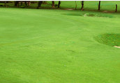 Golf Course Architects | Designers in India – Golf Design India