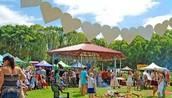 The Inaugural Community Festival