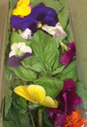 MWD Produce & Floral