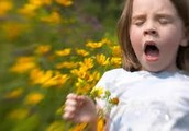 Allergies, Asthma, and Autoimmune Diseases