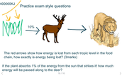 Only about 10% of energy is passed on from each trophic level