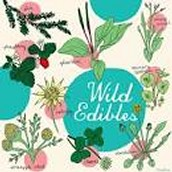 WILD EDIBLES –--------- Saturday May 7, 10 am