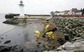 Nettoyage des marées noires dans las plages