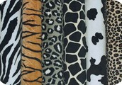 We have all the new patterns and solid ones you will love!