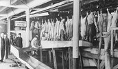 A Chicago meat processing facility