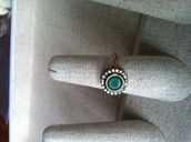 Suzanne Ring - $19
