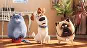 Monday, October 3- The Secret Life of Pets