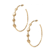 Monterray gold hoops