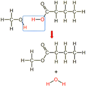 Alcohols and carboxylic acids make esters