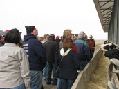 Dairy Beef Short Course tour stop