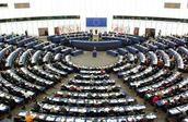 WTO-forsamling