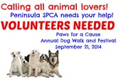 Peninsula SPCA needs volunteers!