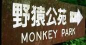 Japan! 🇯🇵