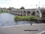 Río Shannon