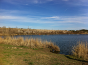 Brushy Creek Lake