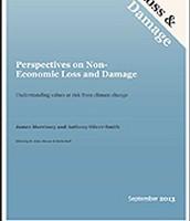 Non- Economic Risk